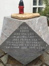 IMG-0247